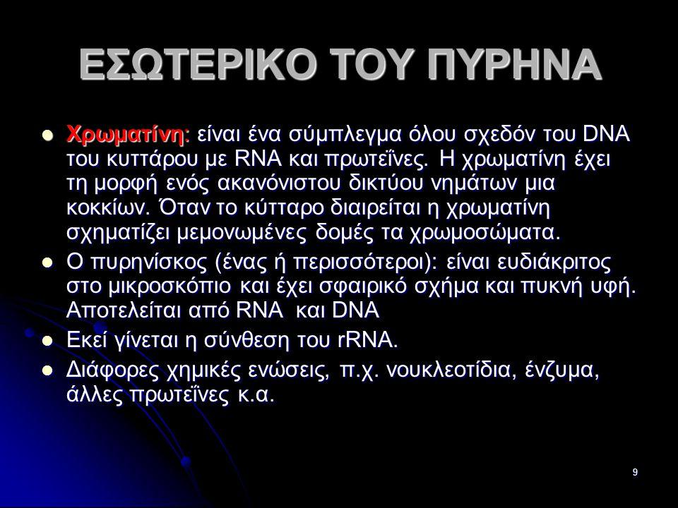 Παν. Πάλλα - ΕΚΦΕ Ν. ΣΜΥΡΝΗΣ9 ΕΣΩΤΕΡΙΚΟ ΤΟΥ ΠΥΡΗΝΑ  Χρωματίνη: είναι ένα σύμπλεγμα όλου σχεδόν του DNA του κυττάρου με RΝΑ και πρωτεΐνες. Η χρωματίνη
