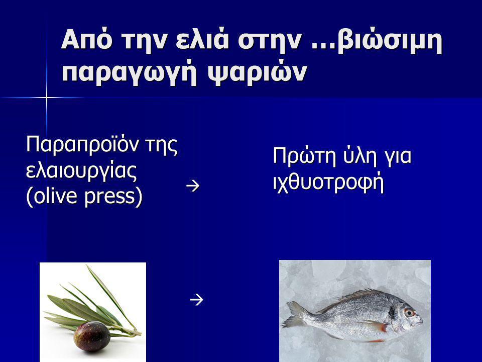 Από την ελιά στην …βιώσιμη παραγωγή ψαριών  Πρώτη ύλη για ιχθυοτροφή  Παραπροϊόν της ελαιουργίας (olive press)