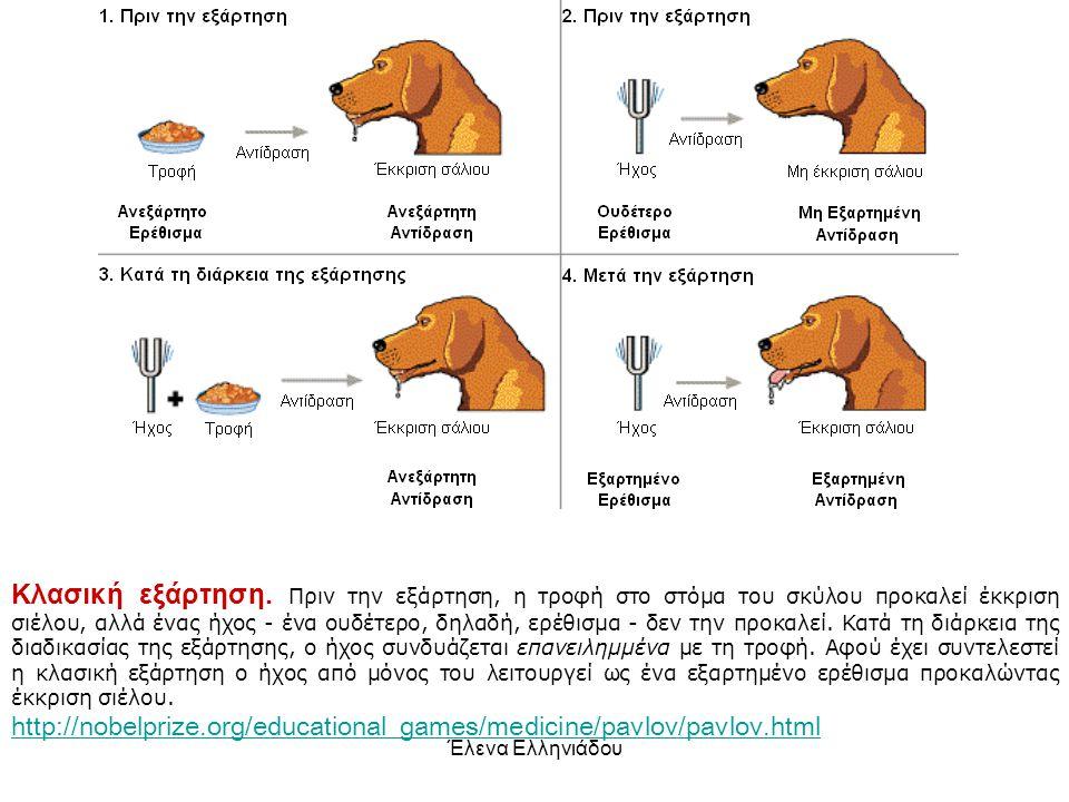 Έλενα Ελληνιάδου Θα μάθει ο σκύλος να συνδέει ένα βιολογικό χαρακτηριστικό με ένα ανεξάρτητο χαρακτηριστικό; Κλασική υποκατάσταση
