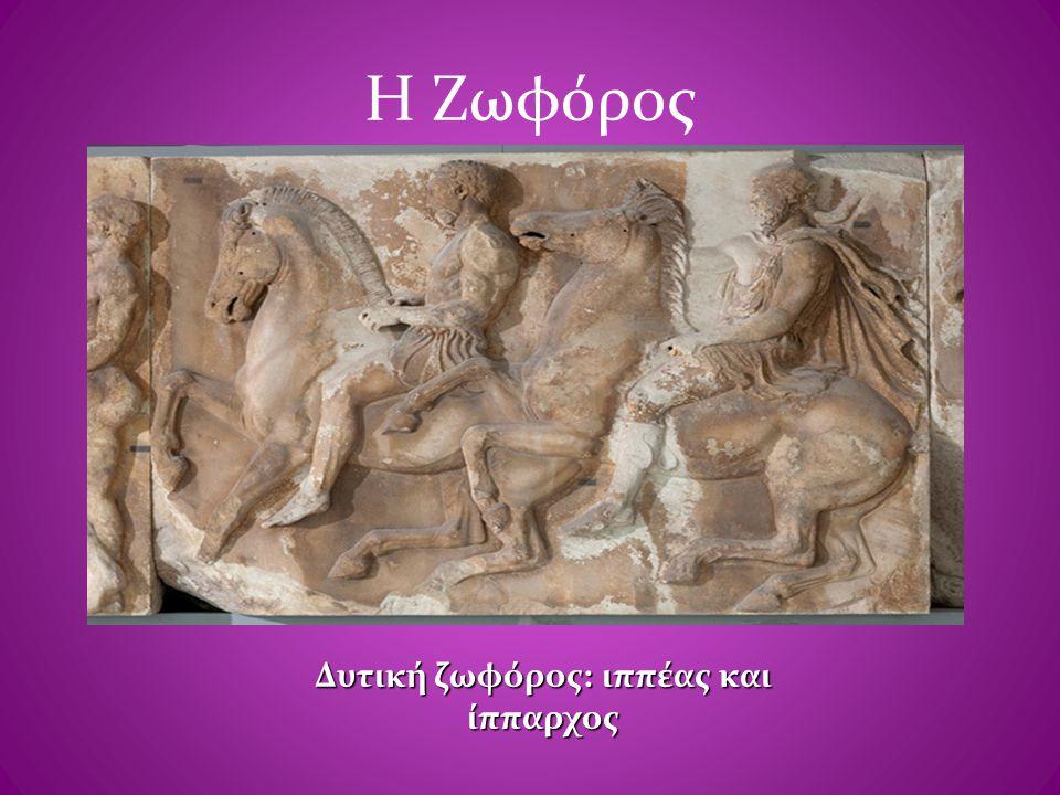 Η Ζωφόρος Δυτική ζωφόρος: ιππέας και ίππαρχος