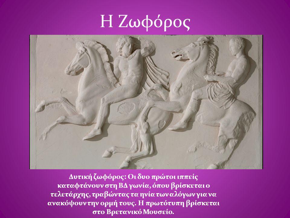 Η Ζωφόρος Δυτική ζωφόρος: Οι δυο πρώτοι ιππείς καταφτάνουν στη ΒΔ γωνία, όπου βρίσκεται ο τελετάρχης, τραβώντας τα ηνία των αλόγων για να ανακόψουν τη