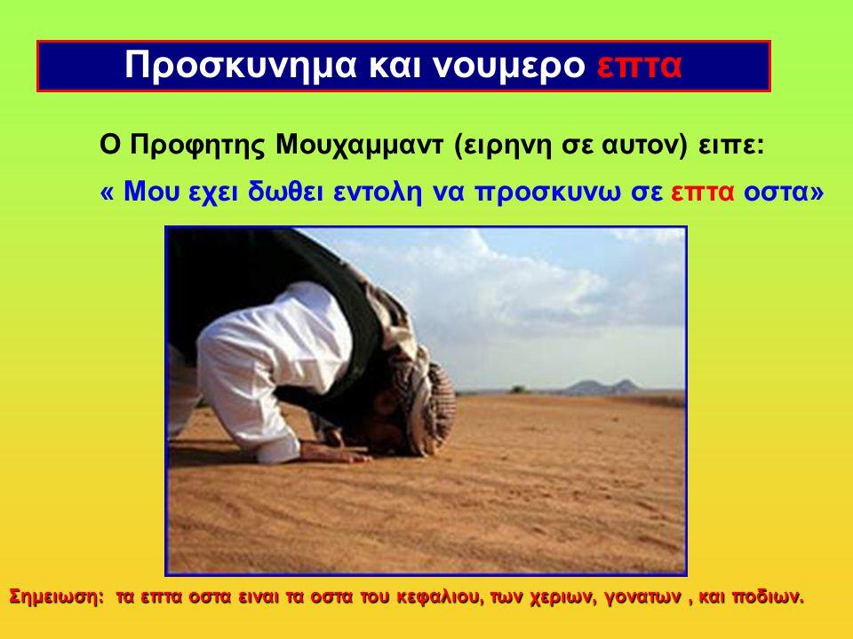 Ο Προφητης Μουχαμμαντ (ειρηνη σε αυτον) ειπε: « Μου εχει δωθει εντολη να προσκυνω σε επτα οστα» Προσκυνημα και νουμερο επτα Σημειωση: τα επτα οστα ειναι τα οστα του κεφαλιου, των χεριων, γονατων, και ποδιων.