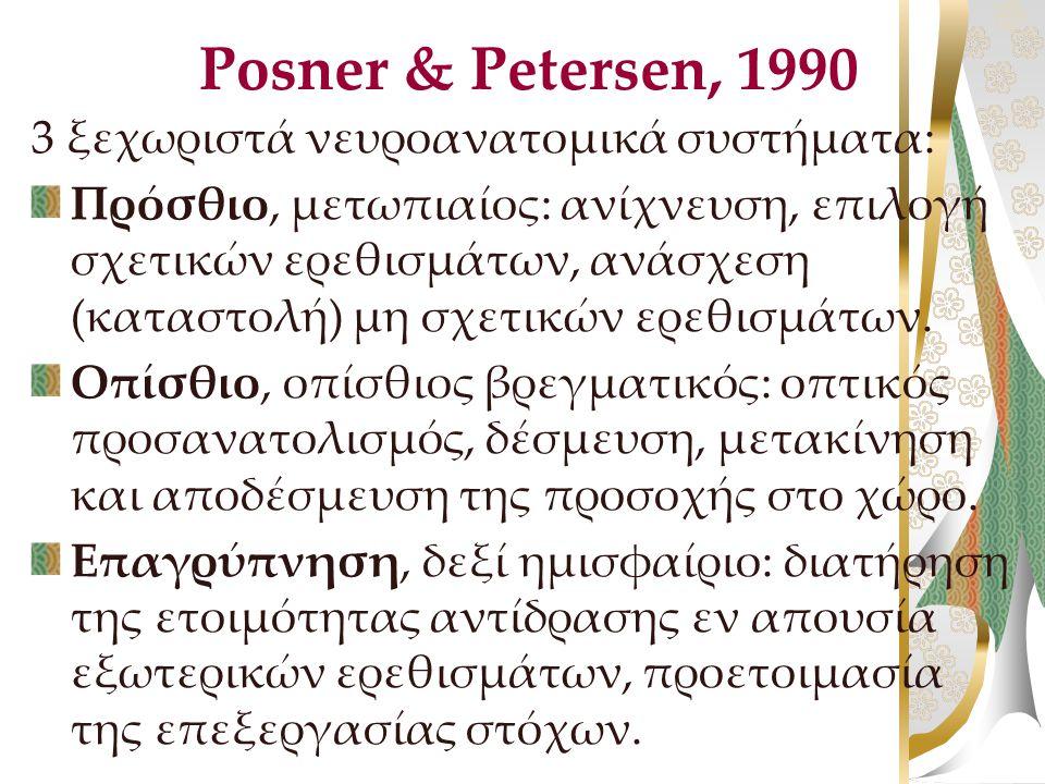 Posner & Petersen, 1990 3 ξεχωριστά νευροανατομικά συστήματα: Πρόσθιο, μετωπιαίος: ανίχνευση, επιλογή σχετικών ερεθισμάτων, ανάσχεση (καταστολή) μη σχ