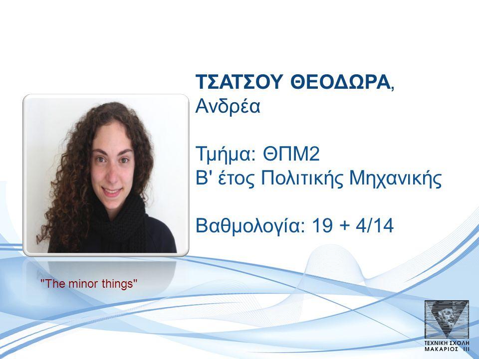 ΤΣΑΤΣΟΥ ΘΕΟΔΩΡΑ, Ανδρέα Τμήμα: ΘΠΜ2 B έτος Πολιτικής Μηχανικής Βαθμολογία: 19 + 4/14 The minor things