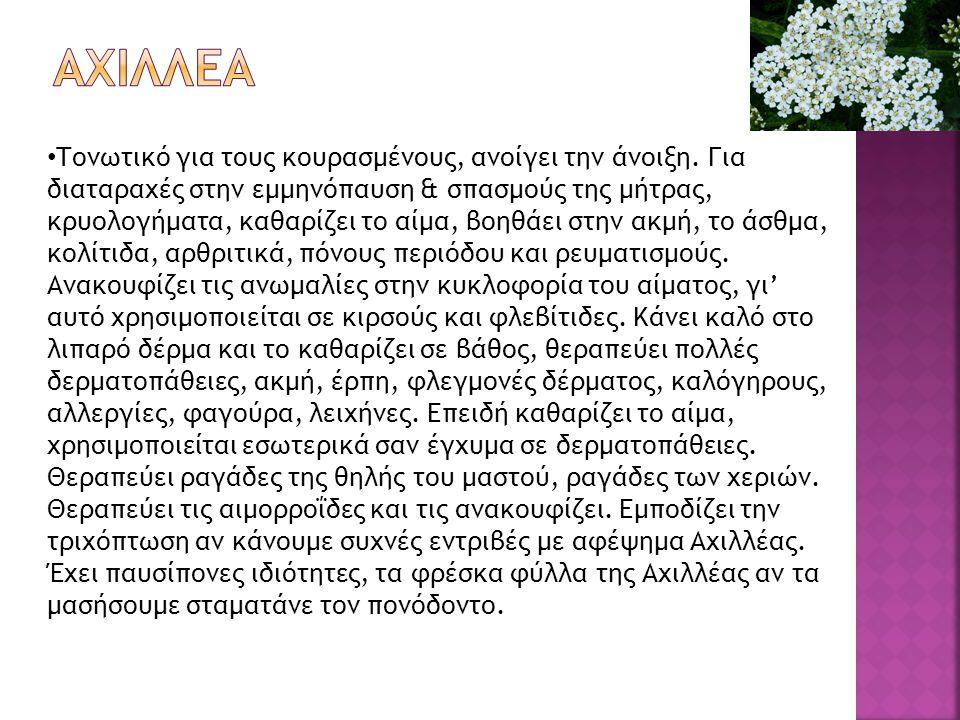  Η Aloe Vera είναι πηγή βιταμινών, με κυριότερες τις Β, C, Ε και β-καροτίνη (πρόδρομο της βιταμίνης Α).
