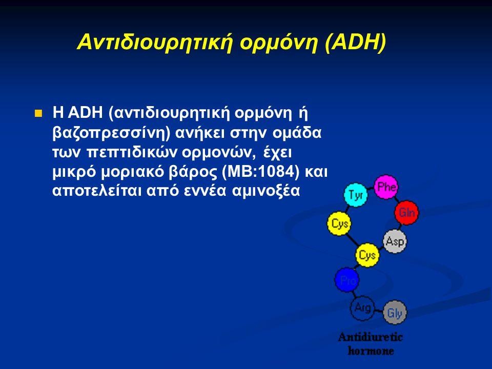 Αντιδιουρητική ορμόνη (ADH)  Η ADH (αντιδιουρητική ορμόνη ή βαζοπρεσσίνη) ανήκει στην ομάδα των πεπτιδικών ορμονών, έχει μικρό μοριακό βάρος (ΜΒ:1084