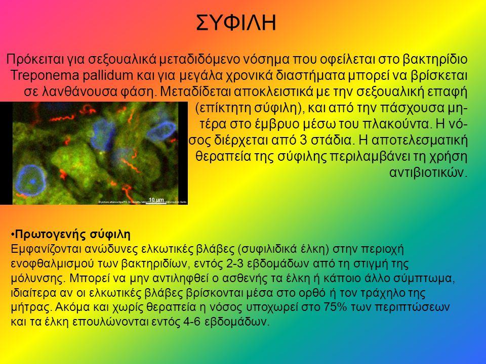 ΣΥΦΙΛΗ Πρόκειται για σεξουαλικά μεταδιδόμενο νόσημα που οφείλεται στο βακτηρίδιο Treponema pallidum και για μεγάλα χρονικά διαστήματα μπορεί να βρίσκεται σε λανθάνουσα φάση.