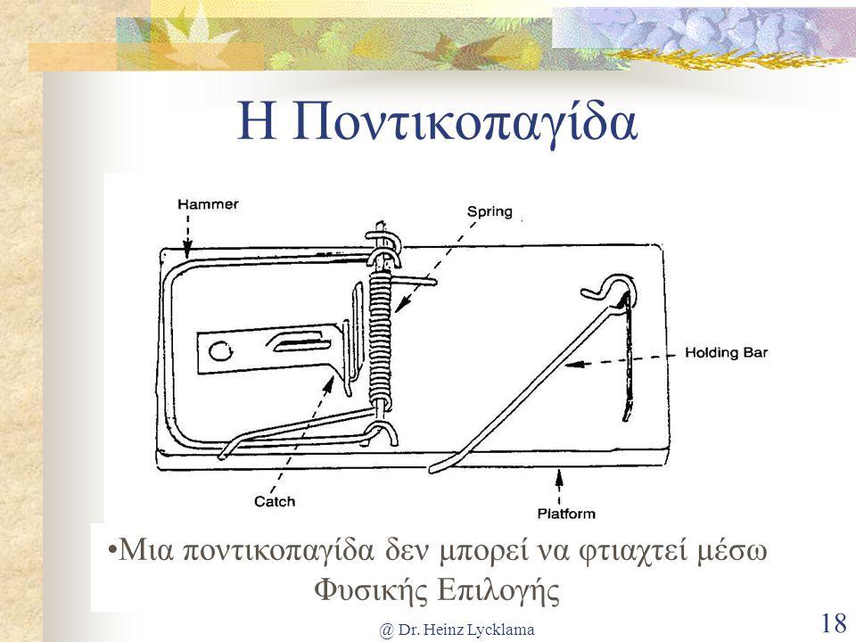 @ Dr. Heinz Lycklama 18 Η Ποντικοπαγίδα •Μια ποντικοπαγίδα δεν μπορεί να φτιαχτεί μέσω Φυσικής Επιλογής