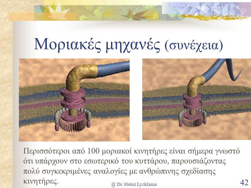 @ Dr. Heinz Lycklama 42 Μοριακές μηχανές (συνέχεια) Περισσότεροι από 100 μοριακοί κινητήρες είναι σήμερα γνωστό ότι υπάρχουν στο εσωτερικό του κυττάρο