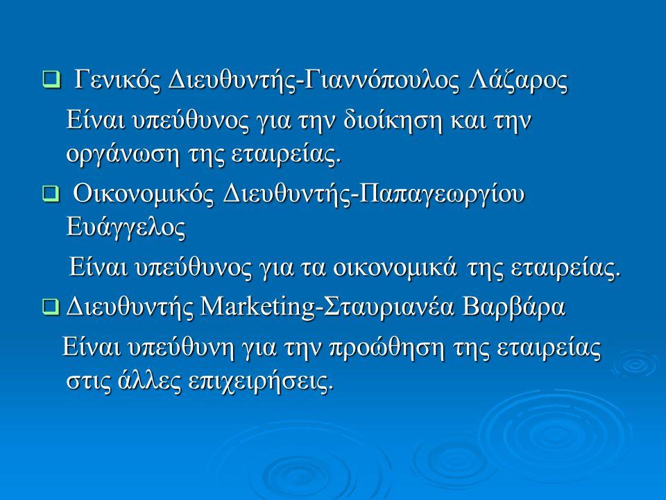  Γενικός Διευθυντής-Γιαννόπουλος Λάζαρος Είναι υπεύθυνος για την διοίκηση και την οργάνωση της εταιρείας. Είναι υπεύθυνος για την διοίκηση και την ορ