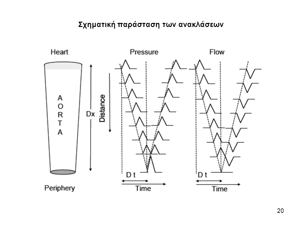Σύγχρονες μετρήσεις παλμού πίεσης στην αορτή ανθρώπου 21