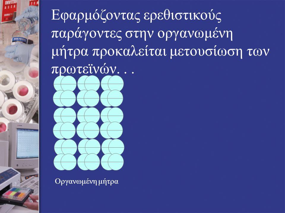 Οργανωμένη μήτρα Εφαρμόζοντας ερεθιστικούς παράγοντες στην οργανωμένη μήτρα προκαλείται μετουσίωση των πρωτεϊνών...