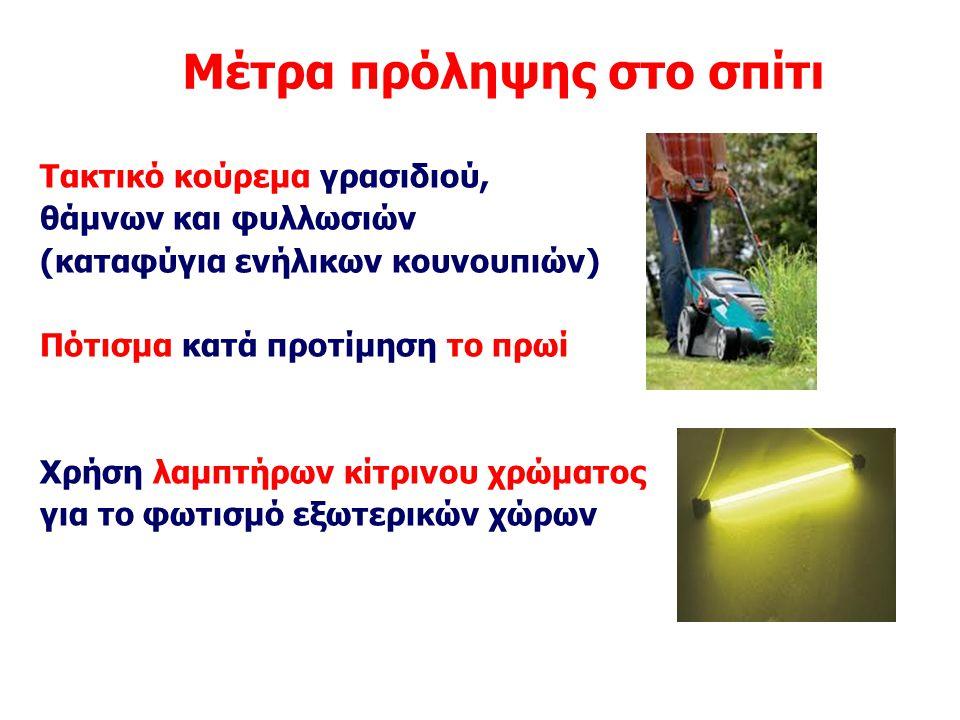 Μέτρα πρόληψης στο σπίτι Τακτικό κούρεμα γρασιδιού, θάμνων και φυλλωσιών (καταφύγια ενήλικων κουνουπιών) Πότισμα κατά προτίμηση το πρωί Χρήση λαμπτήρω