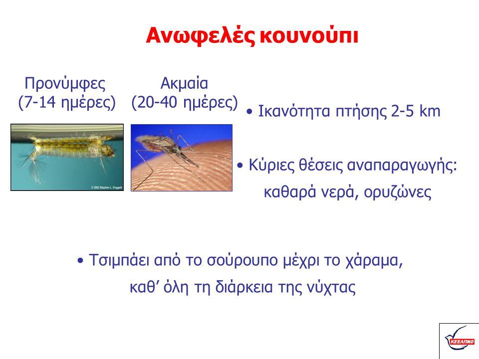 Κύκλος ζωής κουνουπιού •Προνύμφες: 7-14 ημέρες στο νερό •Ακμαία (ενήλικα): ζουν 20-40 ημέρες •Συνήθως αποθέτουν αυγά τη νύχτα: - Συνήθως σε καθαρό νερό - Σε μικρές ή μεγάλες συλλογές νερού •Σε κάθε γέννα 200-300 αυγά Ωοαπόθεση έως και ανά 3 ημέρες
