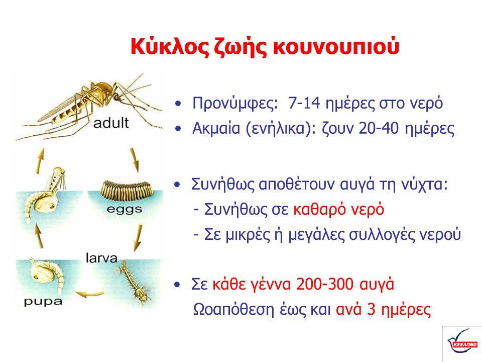 Κύκλος ζωής κουνουπιού •Προνύμφες: 7-14 ημέρες στο νερό •Ακμαία (ενήλικα): ζουν 20-40 ημέρες •Συνήθως αποθέτουν αυγά τη νύχτα: - Συνήθως σε καθαρό νερ