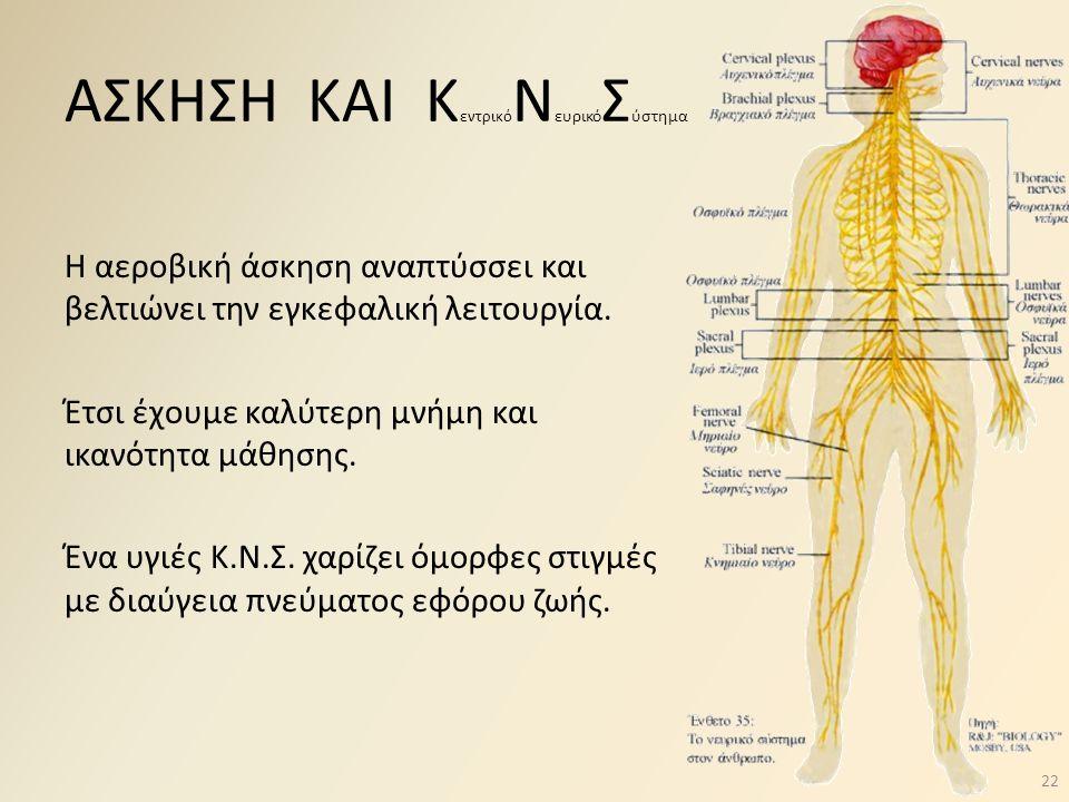 ΑΣΚΗΣΗ ΚΑΙ Κ εντρικό Ν ευρικό Σ ύστημα Η αεροβική άσκηση αναπτύσσει και βελτιώνει την εγκεφαλική λειτουργία. Έτσι έχουμε καλύτερη μνήμη και ικανότητα
