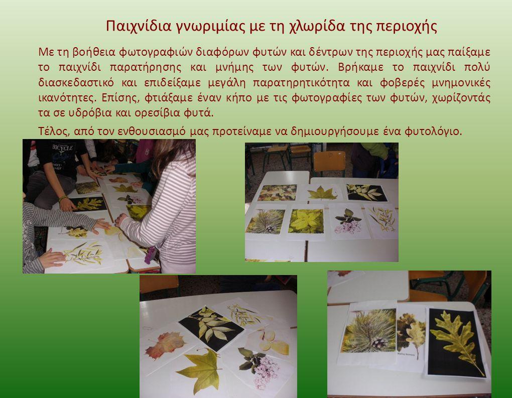 Παιχνίδια γνωριμίας με τη χλωρίδα της περιοχής Με τη βοήθεια φωτογραφιών διαφόρων φυτών και δέντρων της περιοχής μας παίξαμε το παιχνίδι παρατήρησης και μνήμης των φυτών.