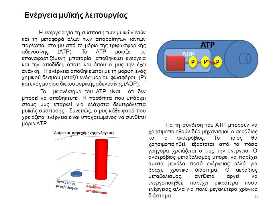Αναερόβιος μεταβολισμός Ενέργεια μυϊκής λειτουργίας Η ενέργεια για τη σύσπαση των μυϊκών ινών και τη μεταφορά όλων των απαραίτητων ιόντων παρέχεται στ