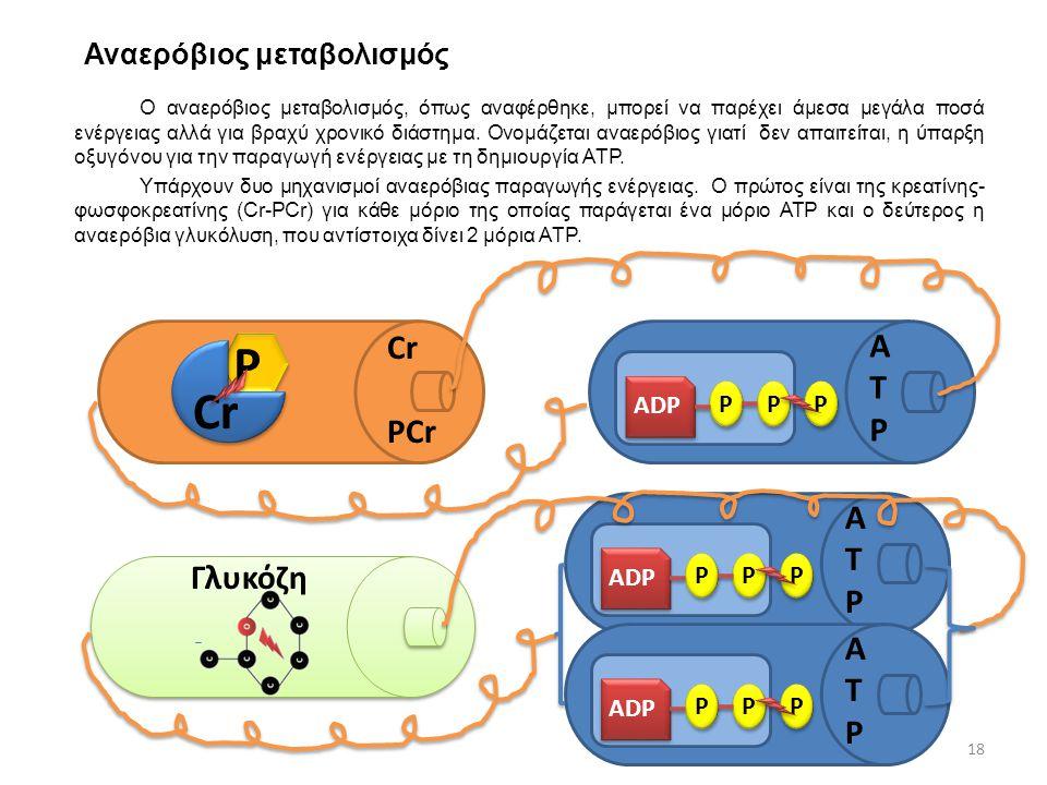 Αναερόβιος μεταβολισμός Ο αναερόβιος μεταβολισμός, όπως αναφέρθηκε, μπορεί να παρέχει άμεσα μεγάλα ποσά ενέργειας αλλά για βραχύ χρονικό διάστημα. Ονο
