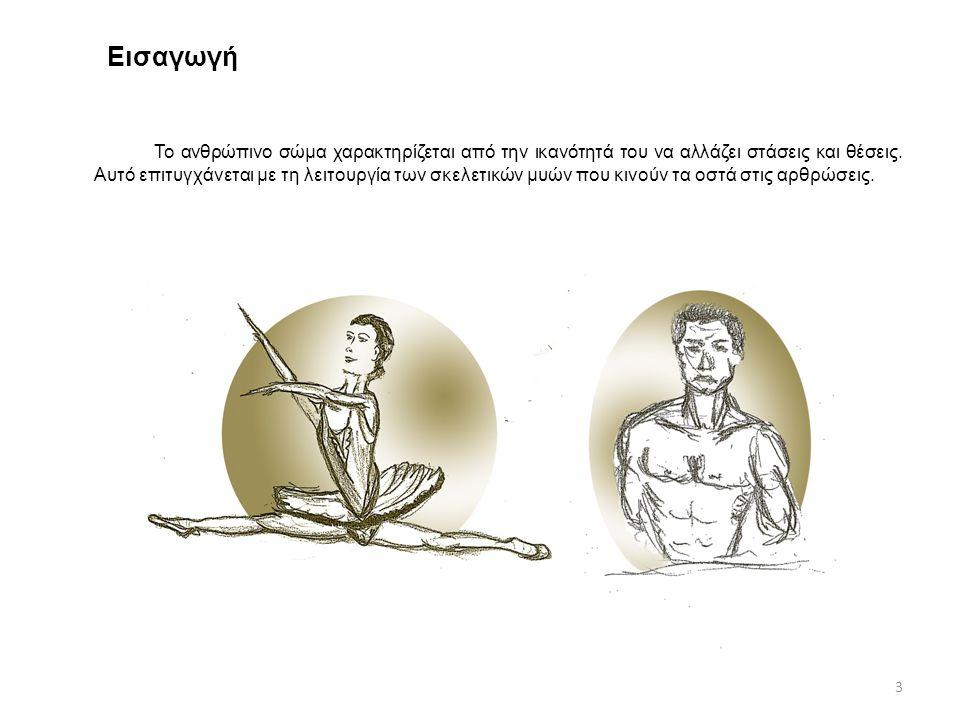 Εισαγωγή Το ανθρώπινο σώμα χαρακτηρίζεται από την ικανότητά του να αλλάζει στάσεις και θέσεις. Αυτό επιτυγχάνεται με τη λειτουργία των σκελετικών μυών