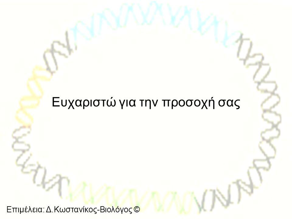 Επιμέλεια: Δ.Κωστανίκος-Βιολόγος © Ευχαριστώ για την προσοχή σας