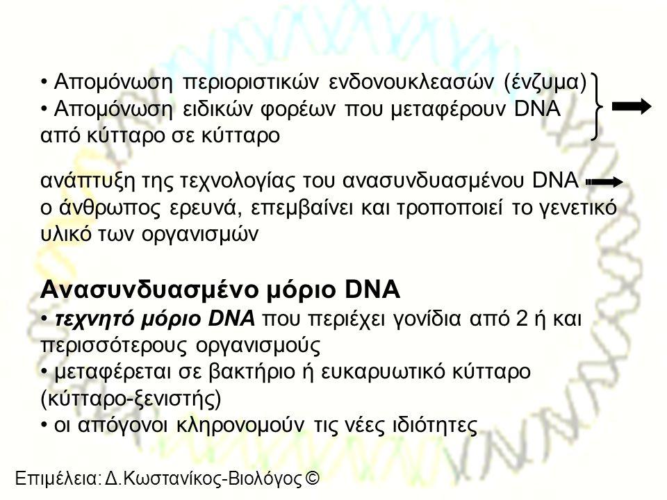 Επιμέλεια: Δ.Κωστανίκος-Βιολόγος © • Απομόνωση περιοριστικών ενδονουκλεασών (ένζυμα) • Απομόνωση ειδικών φορέων που μεταφέρουν DNA από κύτταρο σε κύττ