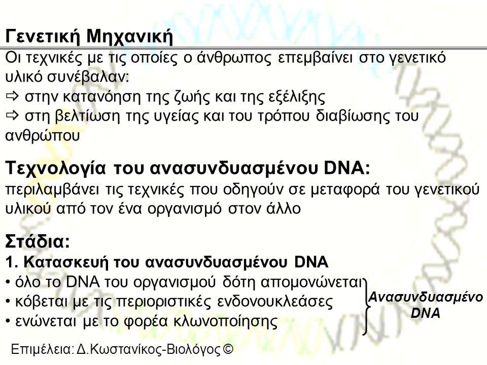 Επιμέλεια: Δ.Κωστανίκος-Βιολόγος © Γενετική Μηχανική Οι τεχνικές με τις οποίες ο άνθρωπος επεμβαίνει στο γενετικό υλικό συνέβαλαν:  στην κατανόηση τη