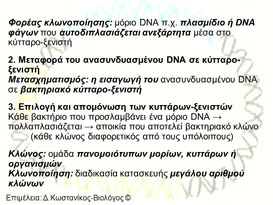 Επιμέλεια: Δ.Κωστανίκος-Βιολόγος © Φορέας κλωνοποίησης: μόριο DNA π.χ. πλασμίδιο ή DNA φάγων που αυτοδιπλασιάζεται ανεξάρτητα μέσα στο κύτταρο-ξενιστή