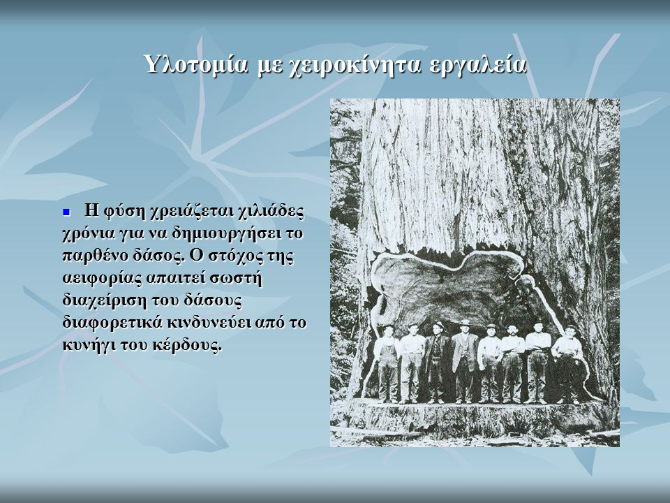 Ο φελλός προέρχεται από τον φλοιό της φελλοδρυός, χωρίς να καταστρέφεται το δένδρο.