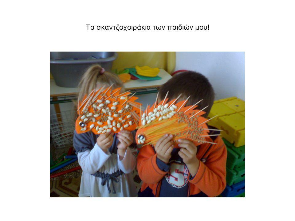Τα σκαντζοχοιράκια των παιδιών μου!