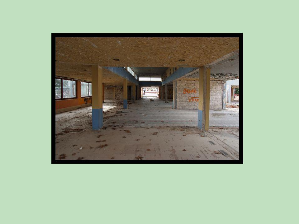 Ο φέρων οργανισμός εμφανίζει εξής γενικά χαρακτηριστικά :  Ο σκελετός του κτηρίου είναι αμιγώς πλαισιακή κατασκευή από οπλισμένο σκυρόδεμα.