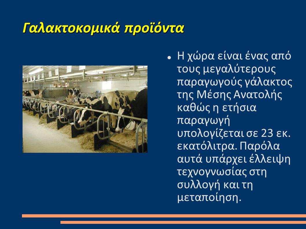 Γαλακτοκομικά προϊόντα  Η χώρα είναι ένας από τους μεγαλύτερους παραγωγούς γάλακτος της Μέσης Ανατολής καθώς η ετήσια παραγωγή υπολογίζεται σε 23 εκ.