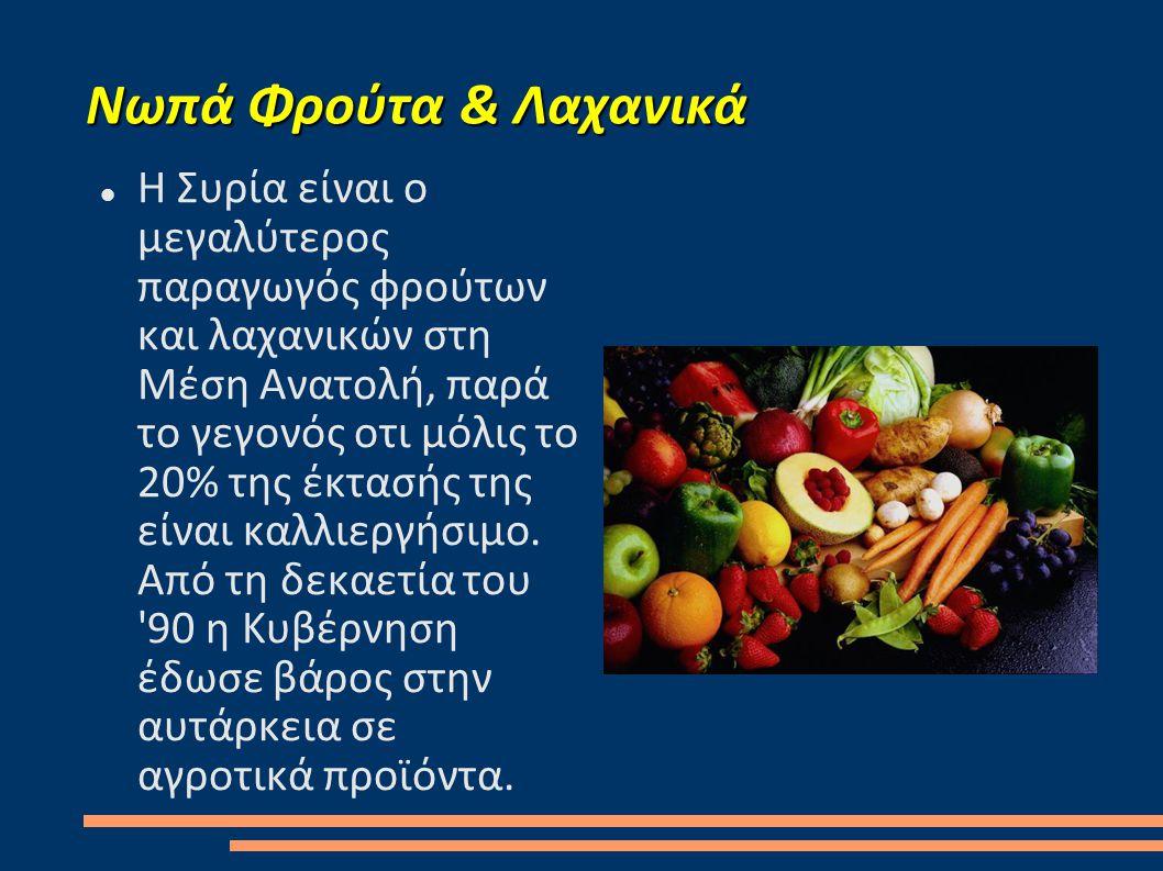 Νωπά Φρούτα & Λαχανικά  Η Συρία είναι ο μεγαλύτερος παραγωγός φρούτων και λαχανικών στη Μέση Ανατολή, παρά το γεγονός οτι μόλις το 20% της έκτασής της είναι καλλιεργήσιμο.