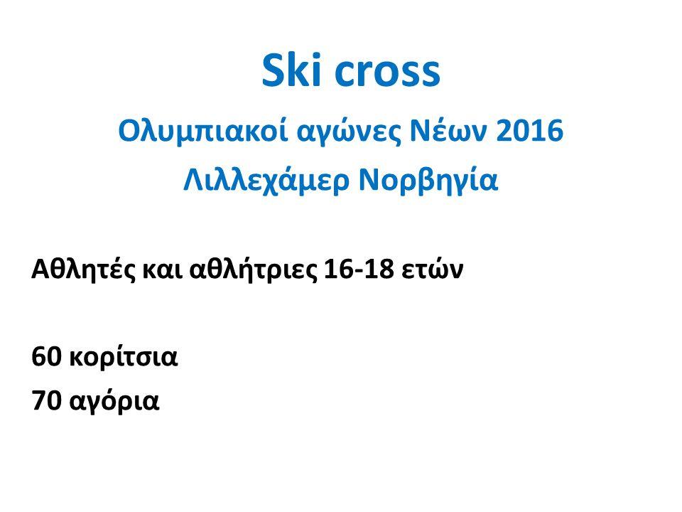 Ski cross Ολυμπιακοί αγώνες Νέων 2016 Λιλλεχάμερ Νορβηγία Αγωνίσματα: Sprint C 10 F Relay (2M+2W) Ski Cross