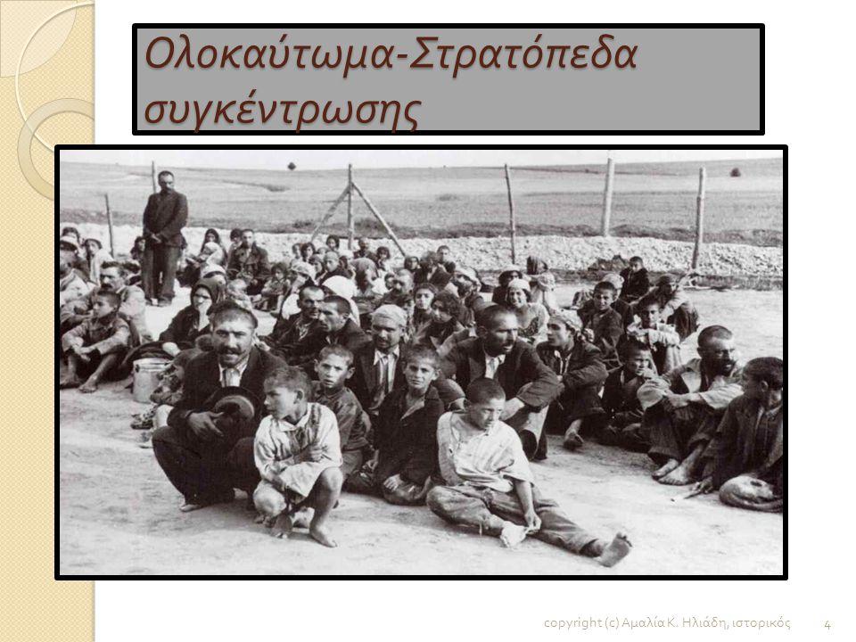 Ολοκαύτωμα και Ναζισμός : Μια σκοτεινή σελίδα της ευρωπαϊκής ιστορίας copyright (c) Αμαλία Κ. Ηλιάδη, ιστορικός 3