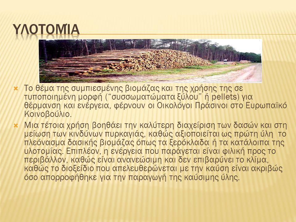 """ Το θέμα της συμπιεσμένης βιομάζας και της χρήσης της σε τυποποιημένη μορφή (""""συσσωματώματα ξύλου"""" ή pellets) για θέρμανση και ενέργεια, φέρνουν οι Ο"""