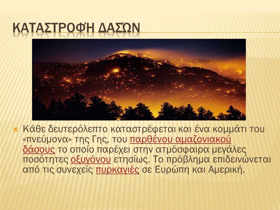  Κάθε δευτερόλεπτο καταστρέφεται και ένα κομμάτι του «πνεύμονα» της Γης, του παρθένου αμαζονιακού δάσους το οποίο παρέχει στην ατμόσφαιρα μεγάλες ποσ