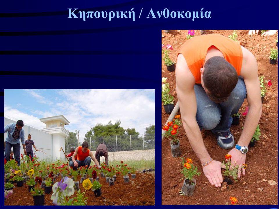Κηπουρική / Ανθοκομία