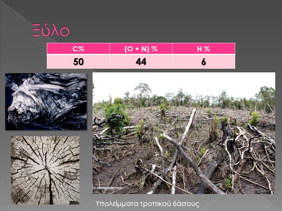 C%(O + N) %H %50446 Υπολείμματα τροπικού δάσους