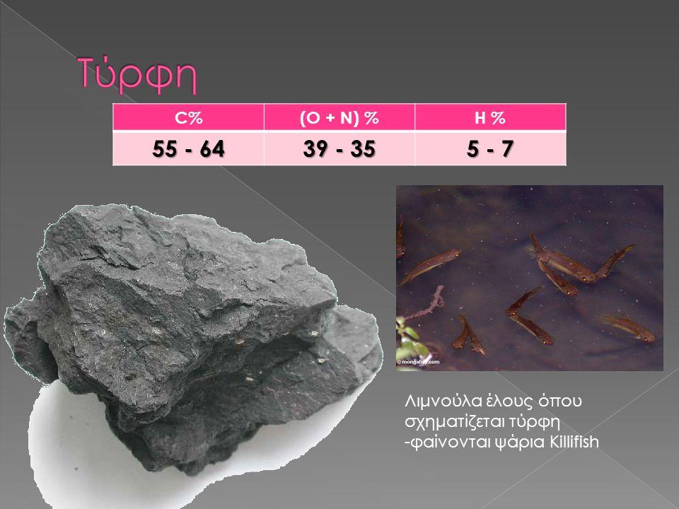 C%(O + N) %H % 55 - 64 39 - 35 5 - 7 Λιμνούλα έλους όπου σχηματίζεται τύρφη -φαίνονται ψάρια Killifish