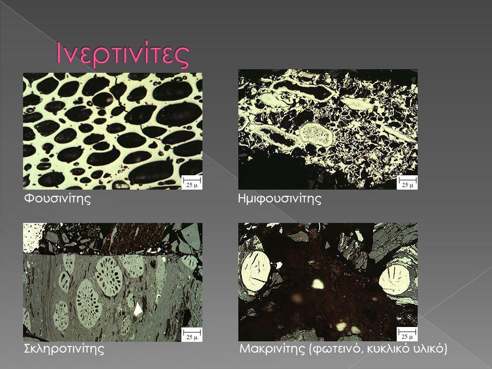 ΦουσινίτηςΗμιφουσινίτης ΣκληροτινίτηςΜακρινίτης (φωτεινό, κυκλικό υλικό)