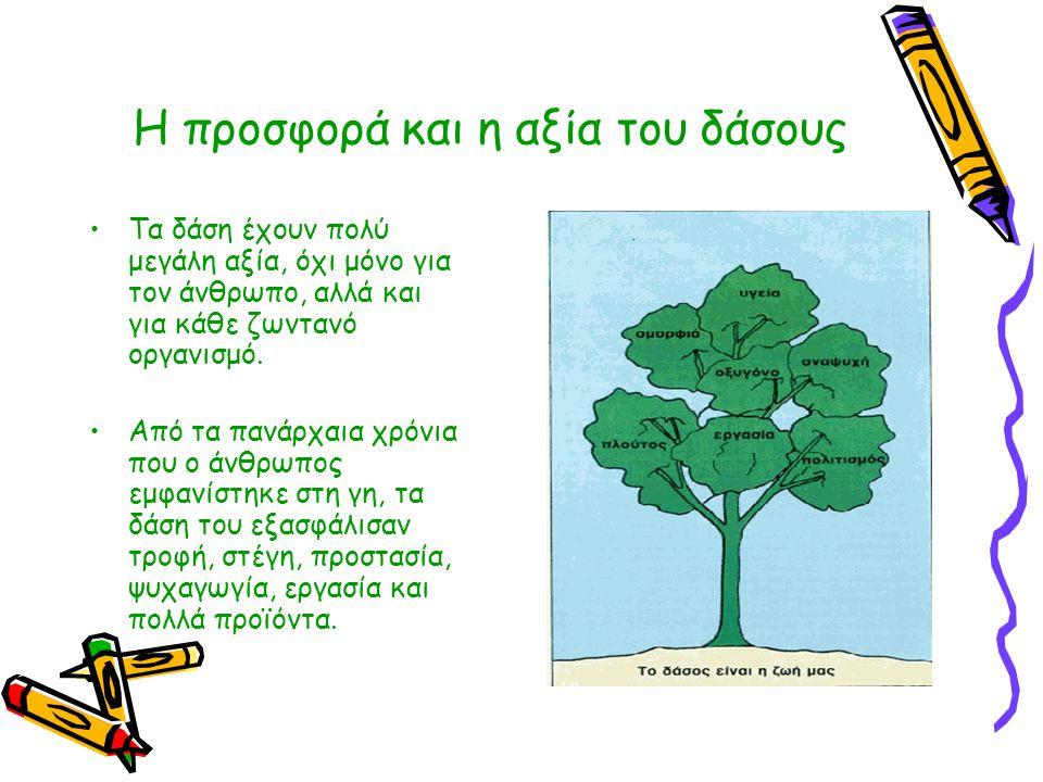 Η προσφορά και η αξία του δάσους •Τα δάση έχουν πολύ μεγάλη αξία, όχι μόνο για τον άνθρωπο, αλλά και για κάθε ζωντανό οργανισμό. •Από τα πανάρχαια χρό