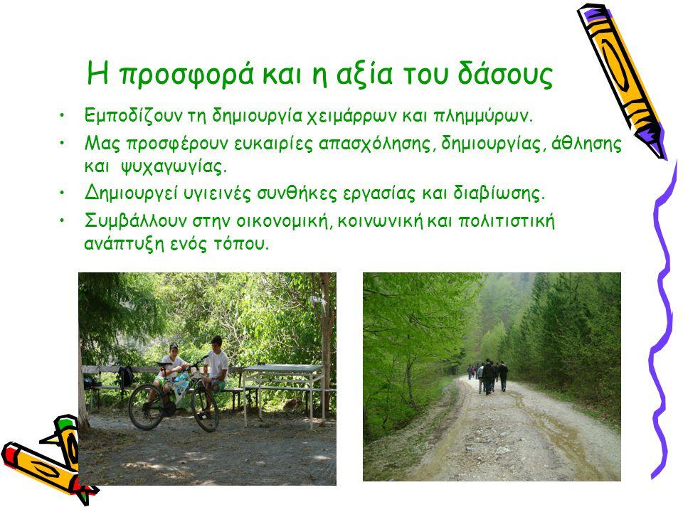 Η προσφορά και η αξία του δάσους •Εμποδίζουν τη δημιουργία χειμάρρων και πλημμύρων. •Μας προσφέρουν ευκαιρίες απασχόλησης, δημιουργίας, άθλησης και ψυ
