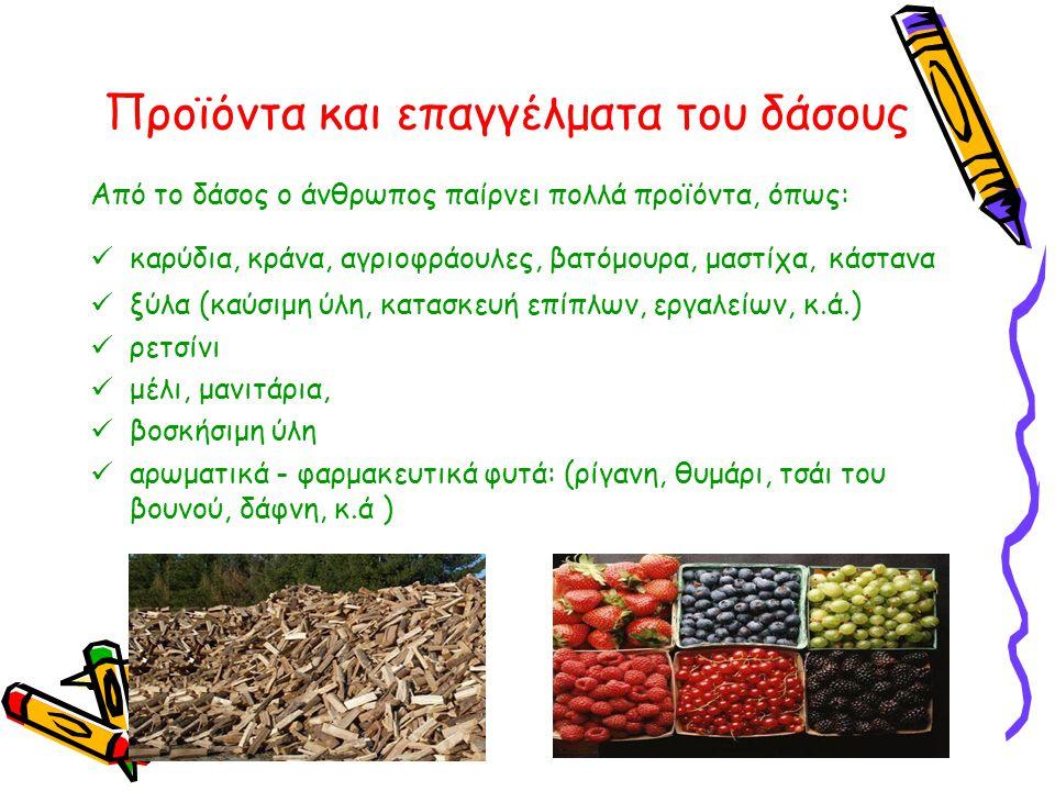 Προϊόντα και επαγγέλματα του δάσους Από το δάσος ο άνθρωπος παίρνει πολλά προϊόντα, όπως:  καρύδια, κράνα, αγριοφράουλες, βατόμουρα, μαστίχα, κάστανα