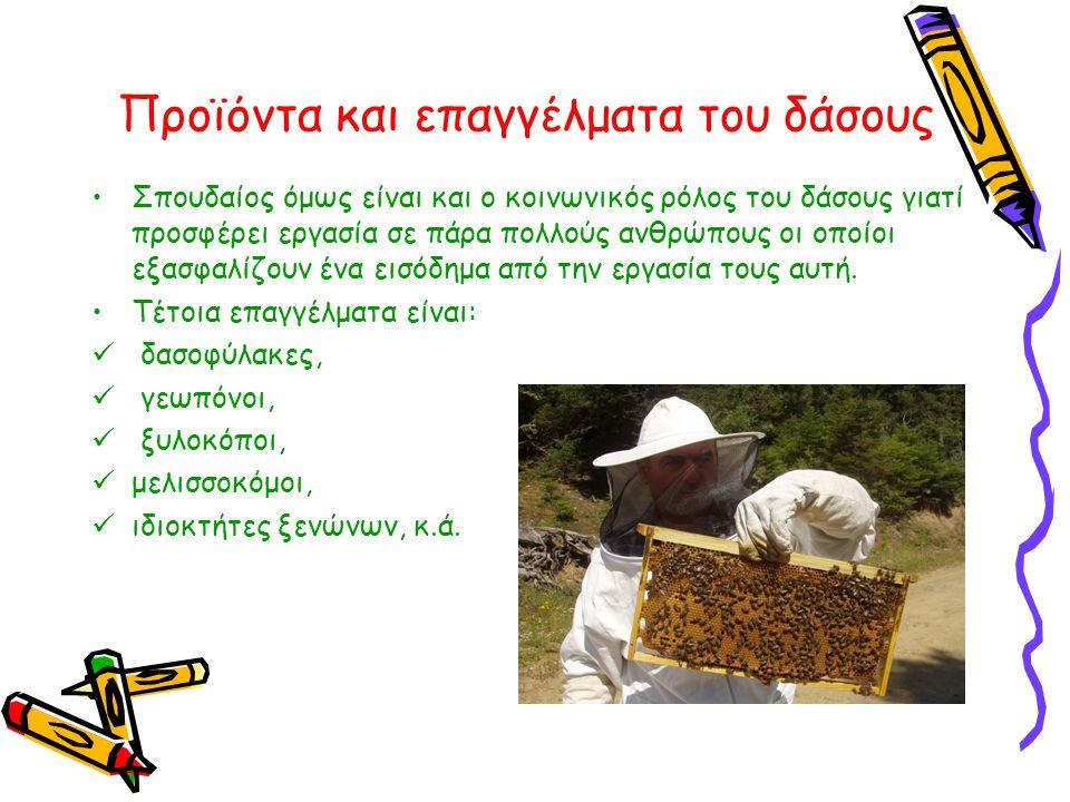 Προϊόντα και επαγγέλματα του δάσους •Σπουδαίος όμως είναι και ο κοινωνικός ρόλος του δάσους γιατί προσφέρει εργασία σε πάρα πολλούς ανθρώπους οι οποίο