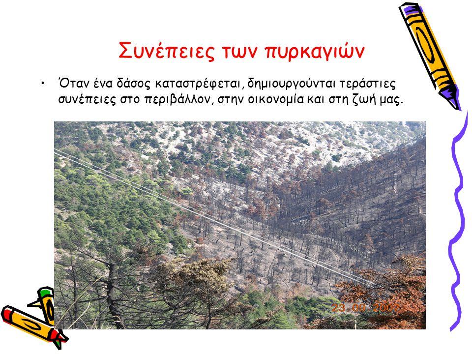 Συνέπειες των πυρκαγιών •Όταν ένα δάσος καταστρέφεται, δημιουργούνται τεράστιες συνέπειες στο περιβάλλον, στην οικονομία και στη ζωή μας.