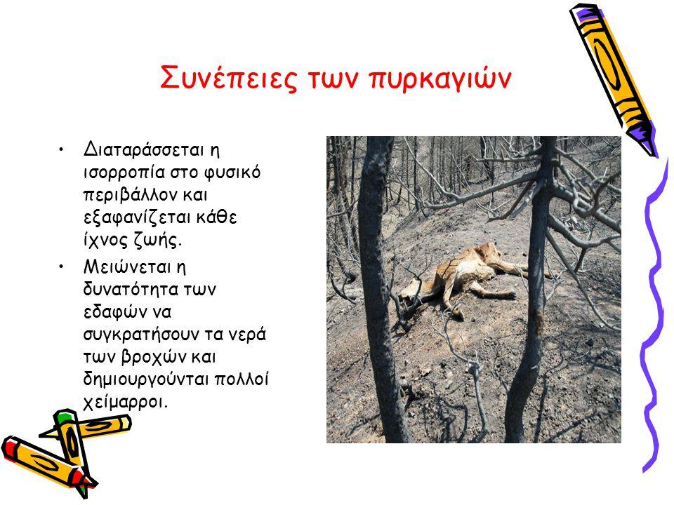 Συνέπειες των πυρκαγιών •Διαταράσσεται η ισορροπία στο φυσικό περιβάλλον και εξαφανίζεται κάθε ίχνος ζωής. •Μειώνεται η δυνατότητα των εδαφών να συγκρ