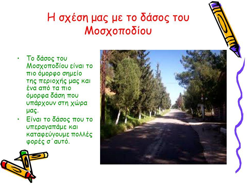 Η σχέση μας με το δάσος του Μοσχοποδίου •Το δάσος του Μοσχοποδίου είναι το πιο όμορφο σημείο της περιοχής μας και ένα από τα πιο όμορφα δάση που υπάρχ
