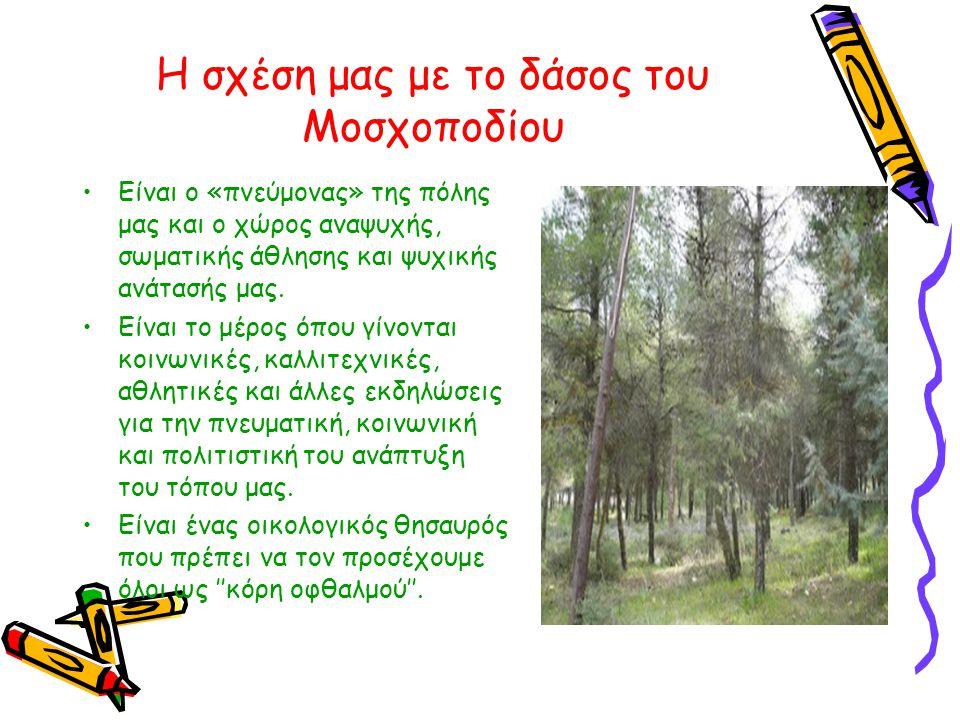 Η σχέση μας με το δάσος του Μοσχοποδίου •Είναι ο «πνεύμονας» της πόλης μας και ο χώρος αναψυχής, σωματικής άθλησης και ψυχικής ανάτασής μας. •Είναι το
