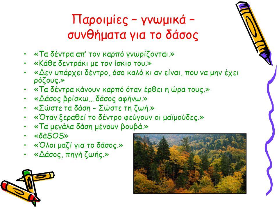 Παροιμίες – γνωμικά – συνθήματα για το δάσος •«Τα δέντρα απ' τον καρπό γνωρίζονται.» •«Κάθε δεντράκι με τον ίσκιο του.» •«Δεν υπάρχει δέντρο, όσο καλό